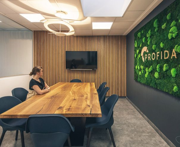 Büro Profida - Besprechungsraum